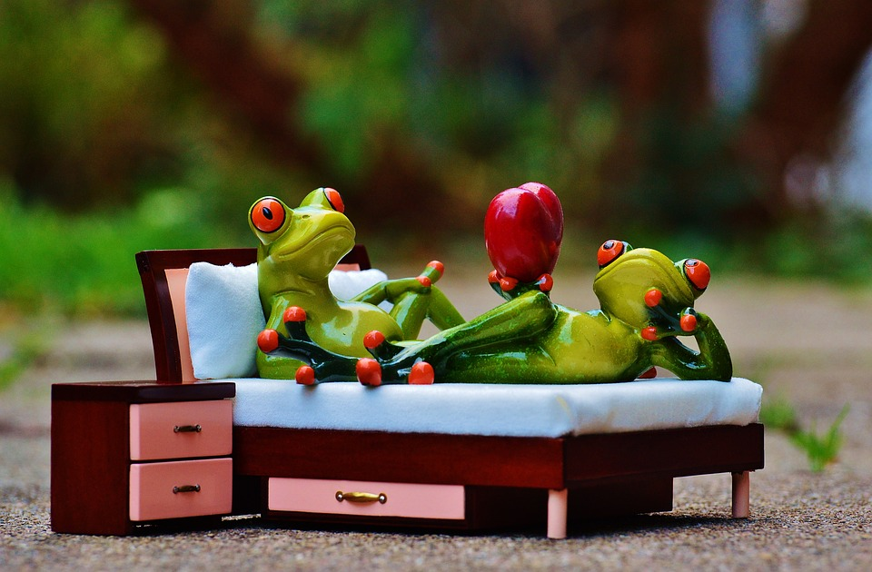 bed with frogs